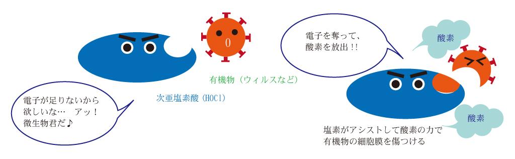 微酸性電解水の除菌メカニズム