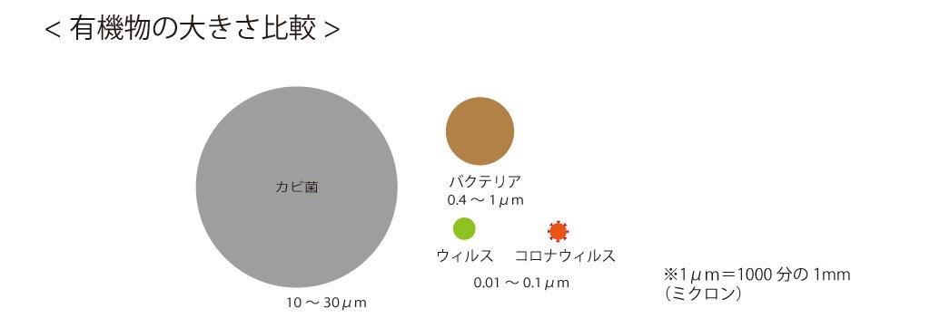 有機物の大きさ比較